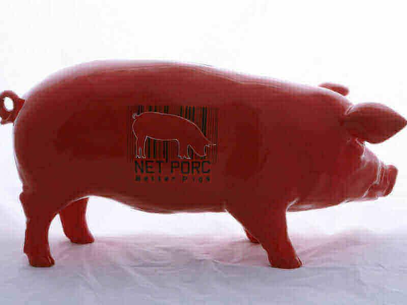 Better Pigs Schwein von der Seite