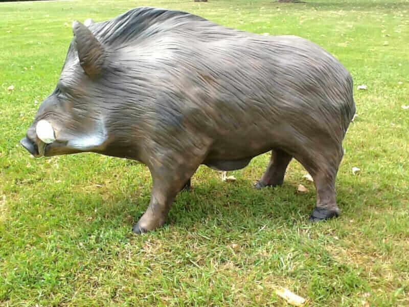 Lebensgroßer Wildschwein Keiler