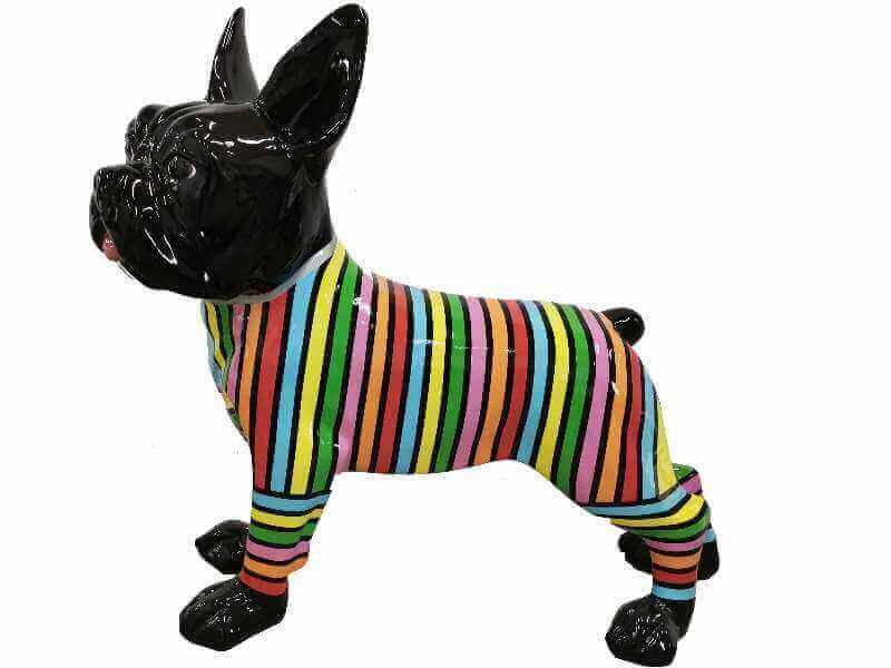 Riesige franzoesische Bulldogge im Schlaganzug