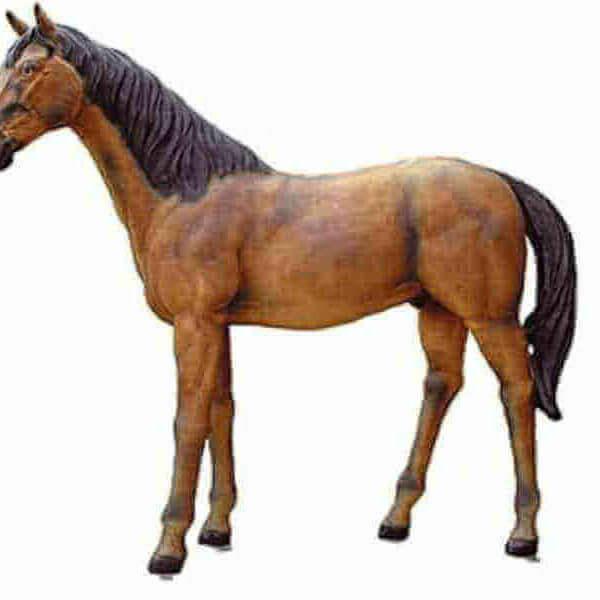 Deko Araber Gengst Pferd