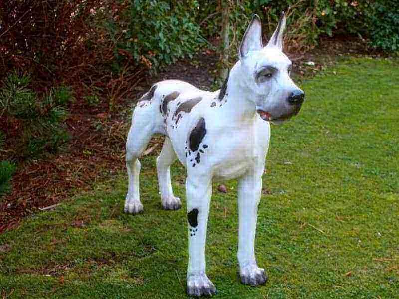 Deko Dogge stehend natürlich bemalt