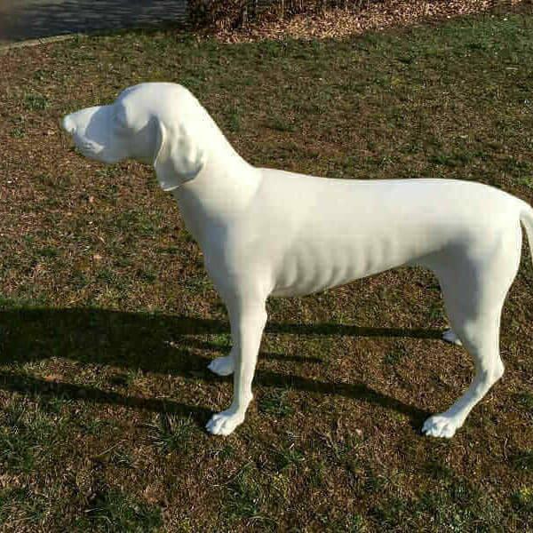 deko kurzhaarhund