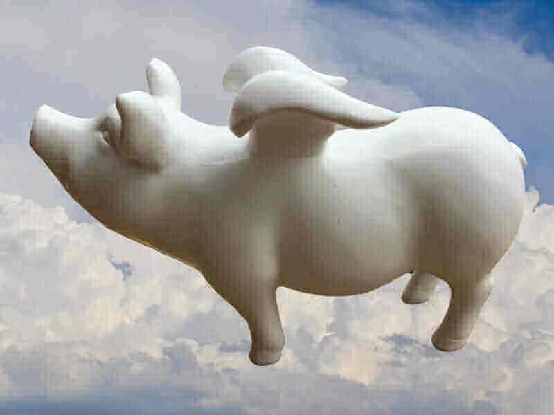 Sparschwein zum Bemalen