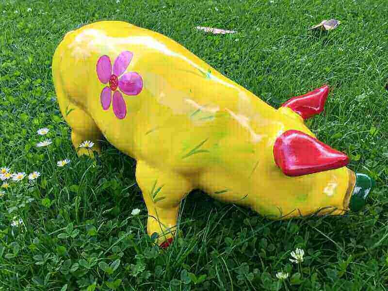 Sommer Schwein Ferkel
