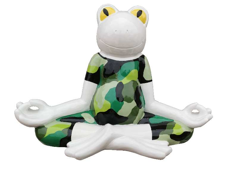 Yoga Froscjh im Tarnazug