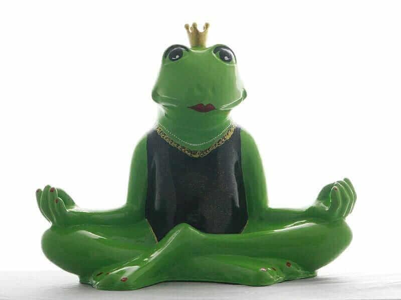 Yoga Frosch mit Krone im Badedress